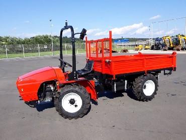 Traktoren Goldoni TRANSCAR 33RS -ungenutz