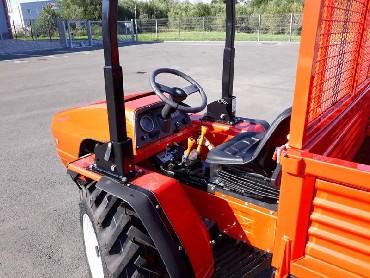 traktor goldoni 33rs